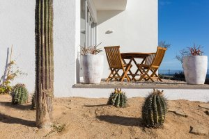 Cactus and patio of our boutique hotel in Mexico - Casa Tara Retreat