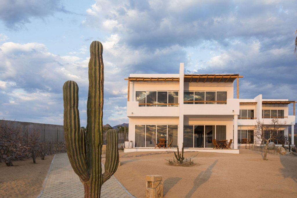 Tall cactus with our boutique hotel in the background - Casa Tara Retreat