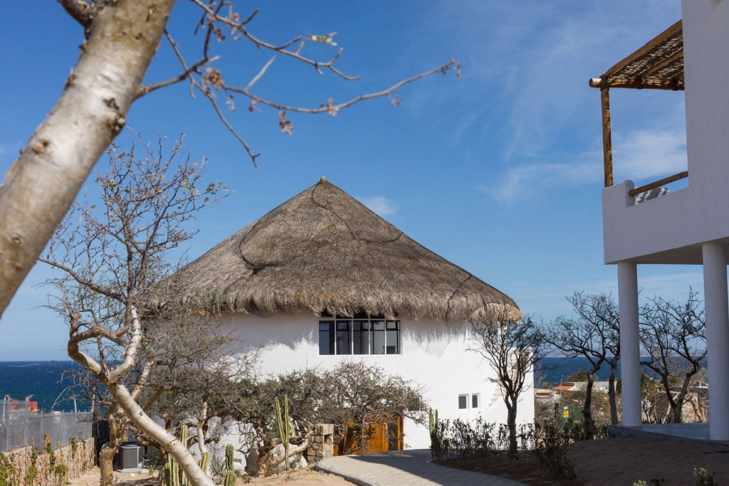 Trees, foliage, and view of our yoga retreat in Mexico - Casa Tara Retreat